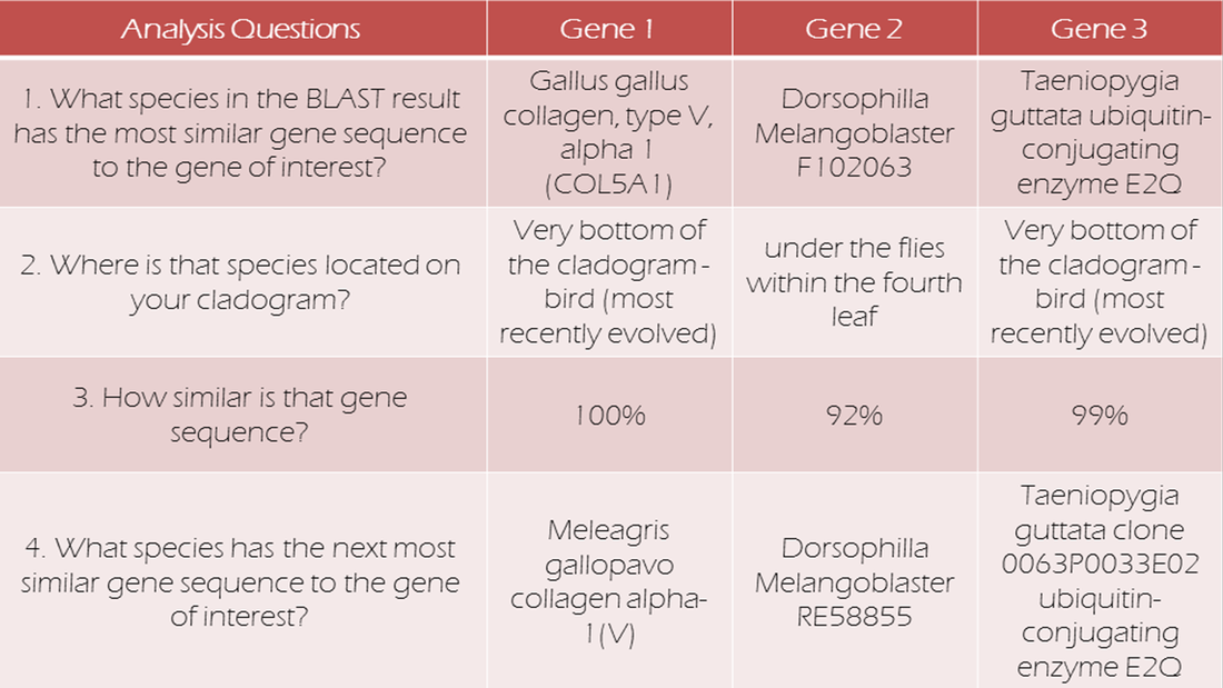 ap biology molecular genetics dbq Welcome to the ap biology website for mr vree's ap biology course at cedar springs high school it will be a busy year and i will use this web site to help you to do the best you can.